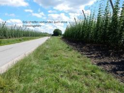 Erosion Vermeidung 2016-07-11 (5)
