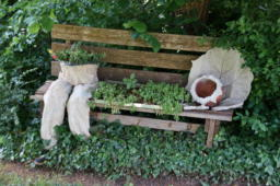 2021-07-10 Kultur im Garten (1)